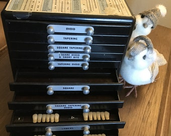 Dental tooth library