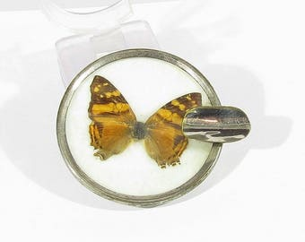 vintage ashtray butterfly