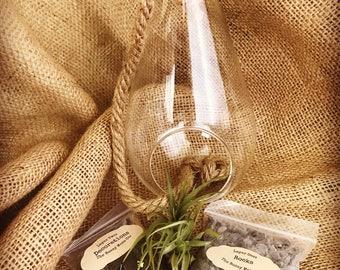 Glass And Rope Hanging Terrarium  Kit