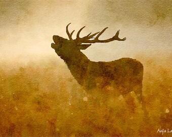 Deer Original Watercolour Painting Q14