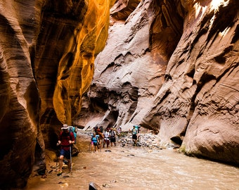 The Narrows Hike Print. Zion National Park - Landscape Print