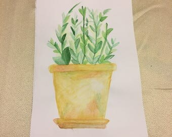 Watercolor Potted Plant