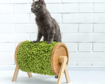 SHEEPY scratcher for cats
