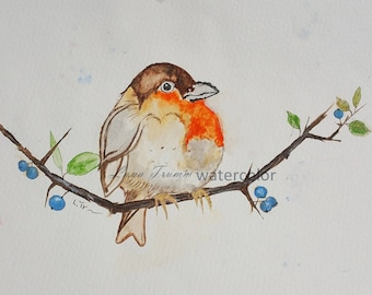 Bird /berry branch/ watercolor