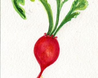 Beet watercolor painting original,  vegetable kitchen wall art 4 x 6, beet art