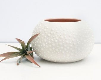 Round Pink Urchin Vase - Dusty Pink Sweet Pea Large - Round Pink Vase with Dots - Air Plant Holder - Porcelain Planter