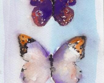 amethyst butterflies 5 x 7 print
