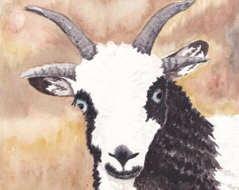 Jacobs Ewe Lamb Greeting Cards-Pack of 6 w/envelopes-Original Watercolor Painting