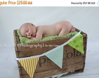 20% OFF 7 Flags, Boy Fabric Bunting Banner, Photo Prop. Designer's Choice Boy Themed Flag Banner, Yellow, Green, Blue.
