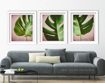 Tropical leaves art - nature home decor - botanical prints -  pink green living room wall art - 11x14 'Monstera Pink Set of Three'