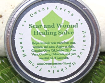 Scar and Wound Herbal Salve - Cuts, Scrapes, Scars, Wound, Herbal Salve, Natural Salve, Antiseptic Salve, Skin Salve
