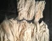 "6.5 oz white 5""- 7"" raw/unwashed Suri Alpaca fiber locks doll hair spinning, felting"