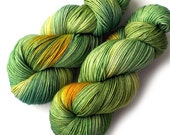 Hand Dyed Yarn Merino Cashmere Nylon Sock Yarn - Meadowlands