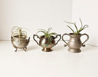 Sugar Bowls, Loving Cups, Silver Sugar Bowl, Pewter Sugar Bowl, Silver Planters