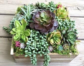 Succulent Arrangement - Table Centerpiece - Succulent Centerpiece - Rustic Home Decor - Wooden Planter Box - Unique Mothers Day Gift