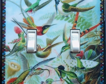 Selection of Hummingbird plates w/ MATCHING SCREWS- Double switchplate rocker switch hummingbird switch cover bird art prints Haeckel prints