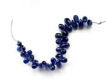 Electric Royal Blue Kyanite Briolette Drops - Parcel of (32)