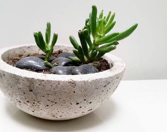 CONCRETE HYPERTUFA PLANTER Tabletop Succulent Pot—Fathers Day, Wedding Registry, Housewarming, Home & Garden—Concrete Beton/Maceta concreto