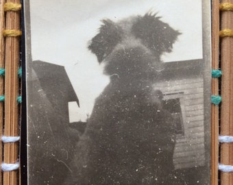 Sweet & Candid Vintage Puppy Snap, R