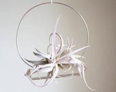 RESERVED for B Two BRASS Air Plant Crystal Garden, Hanging Quartz Airplant Swing Display,