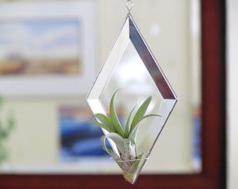 Geometric Air Plant Holder Diamond Shaped Beveled Glass Wall Hanging Plant Holder Clear and Silver Colored Minimal Decor Made in Canada