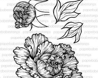 Peony & Bud Stamp Set - Paperbabe Stamps - Clear Photopolymer Stamps - For paper crafting and scrapbooking.