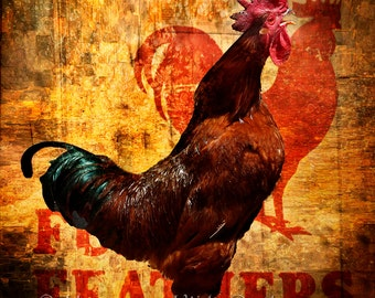 Colorful rooster, hens, Rhode Island red rooster, farm animal, rooster crowing photo, country decor, farm decor, kitchen decor, woman gift