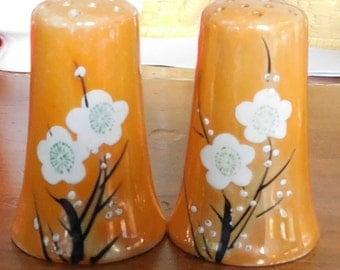 Iridescent Lusterware Porcelain Salt & Pepper shaker set Made in Japan