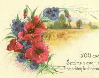 Red Poppies and Blue Bachelor Buttons Country Scene on Unused Vintage Floral Friendship Postcard