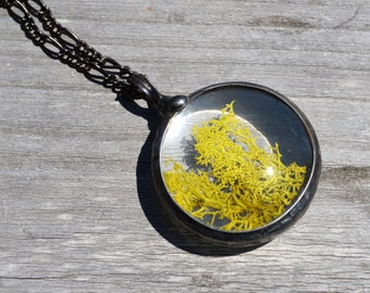 Large Moss Necklace, Terrarium Jewelry, Large Moss Pendant, Nature Jewelry, Forest Necklace, Plant Jewelry, Botanical Necklace (2587)