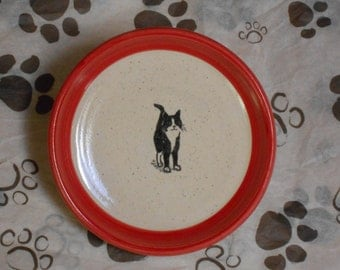Black and White Cat - Plate in Red (Small)
