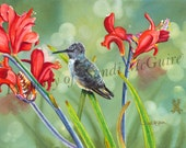 "Watercolor Print ""Hummingbird"" by Sandi McGuire"