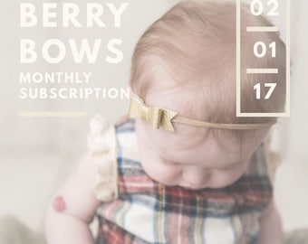 6 Months: Monthly Subscription Bow Service Baby Toddlers Girls Berry Bows