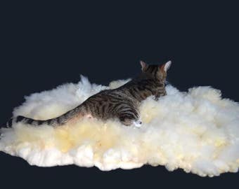 Wool Cat Bed - Pet Bed - Felted Wool Sheep Friendly  Rug - Rare Gulf Coast Native Sheep - Supporting Small US Farms - Ready to Ship