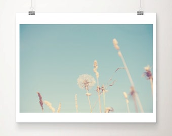 dandelion photograph flower photograph dandelion print summer photograph nature photography nursery wall art pastel home decor