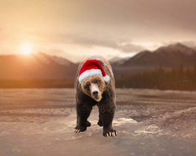 Holiday Grizzly Bear Digital Background and Overlay - Brown Bear Overlay, Alaska Frozen Water Mountains Digital Background