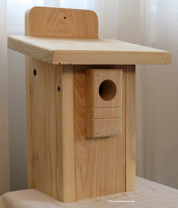Drawing Pattern For Diy Wood Outdoor Bird House Easy