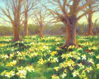 "English Country Landscape, Original Oil Painting, 10 x 10"", ""English Daffodil Fields"" By Kim Stenberg, Impressionistic Art"