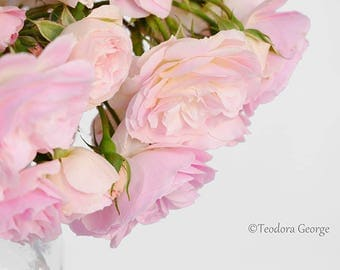 Bouquet of Pink and White Roses Photo Print, Botanical Photography, Flower Photography, Garden Photography, Pink Flower Photo, Rose Photo
