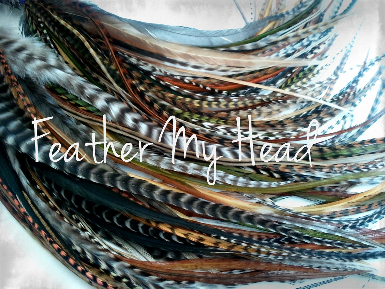 Feather hair extensions do it yourself diy kit 16 pc zoom solutioingenieria Gallery