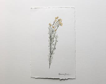 Rescue Painting - Small Sage - Original Watercolor