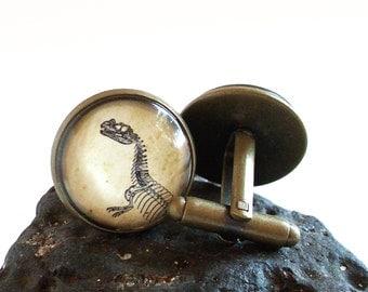 Dinosaur Cufflinks - Ceratosaurus - Antique Fossil Print Cuff Links in Bronze