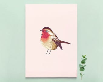 Print / Poster with Robin Bird illustration - A4 size