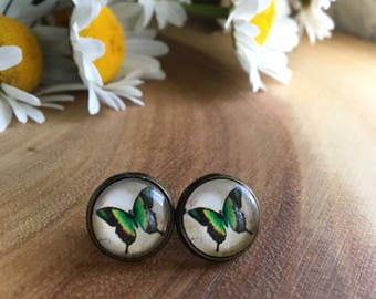 TRANSFORM butterfly inspired round glass studs nickel free earrings