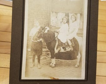 All Original Mounted Sepia Toned Children on Pony circa 1800s early 1900s original photograph