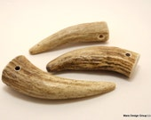 one Antler tip pendant (Set one)
