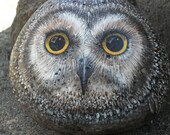 Saw Whet Owl Freestanding Rock OOAK