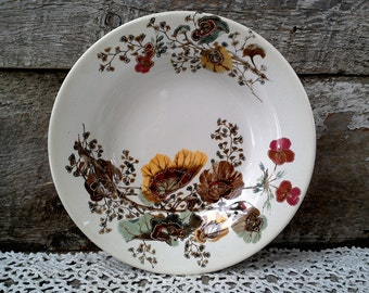 """Antique G.W. Turner, Shallow Soup/Salad Bowl, 8 3/4"""", Multicolored, Polychrome, Floral Transferware, Flowers and Twigs"""