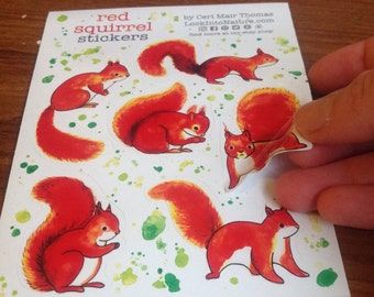 Animal stickers: Red squirrel. Wholesale available