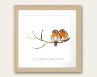 Love Birds Robin Print Artwork Picture